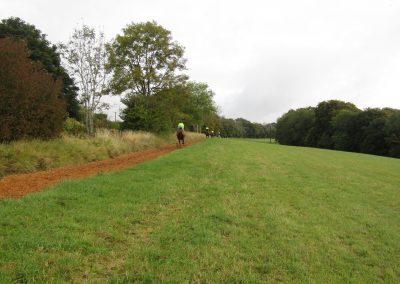 Woodchip gallop3